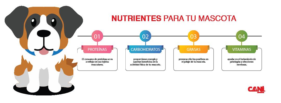 nutrientes para tu mascota